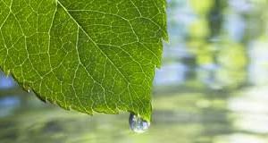Foto: www.riograndedonorte.net