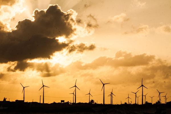 Instalação de novos parques eólicos gera demanda de até 1.500 torres por ano no Brasil. (Foto: Arquivo)