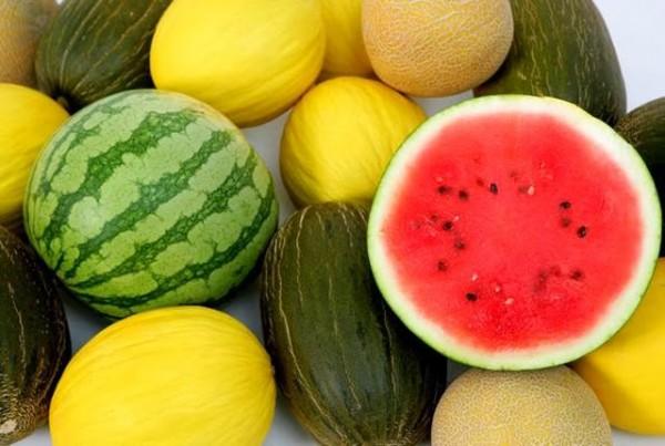 A expectativa dos fruticultores potiguares é que sejam enviados cerca de 10 contêineres por semana para o Chile. (Foto:Divulgação)