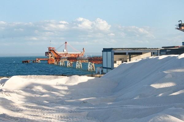 Vice-presidente do Siesal prevê aumento de exportações este ano (Foto: Divulgação/ Codern)