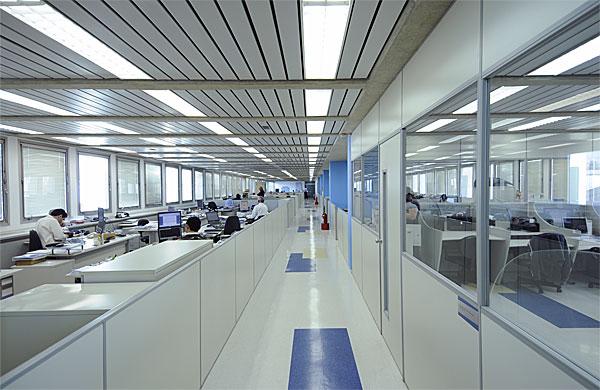 Foto: www.caminhosdoemprego.com
