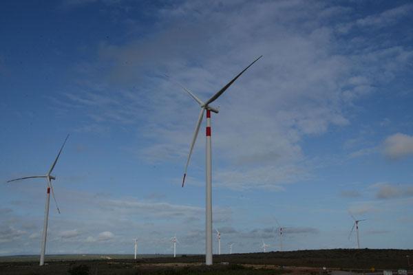 Parque eólico no RN: projetos de geração eólica são maioria no leilão, mas há também usinas solares e térmicas inscritas na disputa. (Foto: Junior Santos)