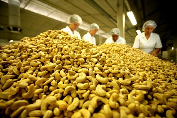 Agricultores aproveitam potencial da produção orgânica.  (Foto: Min Agricultura/Divulgação)