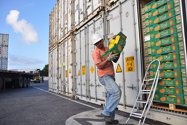 O melão encabeça a lista dos principais produtos exportados. (Foto: Aldair Dantas)