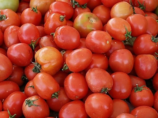 Tomate foi o produto que registrou maior queda:  19,74% (Foto: blogviniciusdesantana.com)