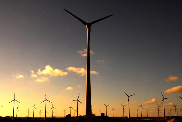 Desenvolvimento da energia eólica tem possibilitado crescimento do mercado de trabalho. (foto: Geandson Oliveira / NJ)