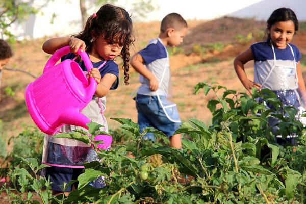 Letícia se diverte com os regadores na horta da escola municipal. (Foto: Alex Régis)