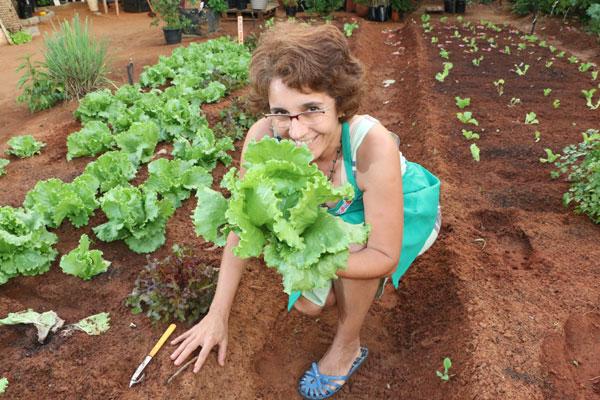 A enfermeira Alexandra Cristina Soares cultiva horta orgânica em Capim Macio. (Foto; Alex Regis)