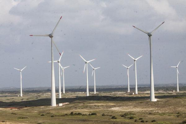 O Rio Grande do Norte é um dos maiores polos de investimentos em energia eólica no Brasil, mas vem perdendo força nos leilões. (Foto: Alex Régis)