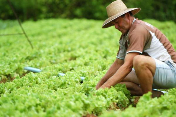 Foto: www.sinterpmt.org.br
