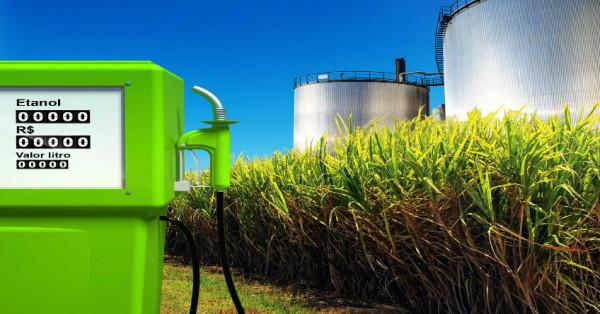 Foto:portal agronogócio
