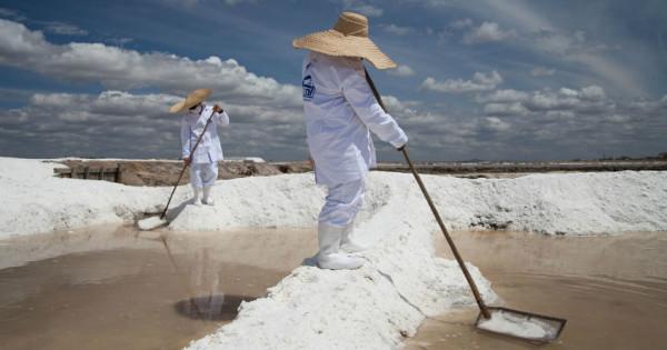 Foto: www.cimsal.com.br