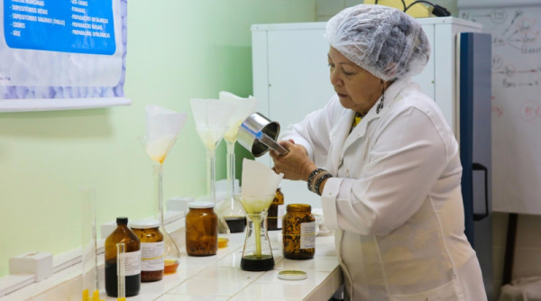 Pesquisadora da UFRN utilizou bioativo da folha do Melão de São Caetano para desenvolver remédio homeopático. (Foto; Wallacy Medeiros)